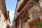 Italian alley in summer
